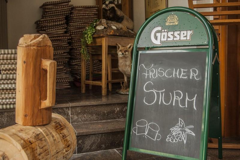 Gastgarten-Oberndorfer-16